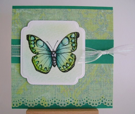 blue and green butterfly on blue green paper