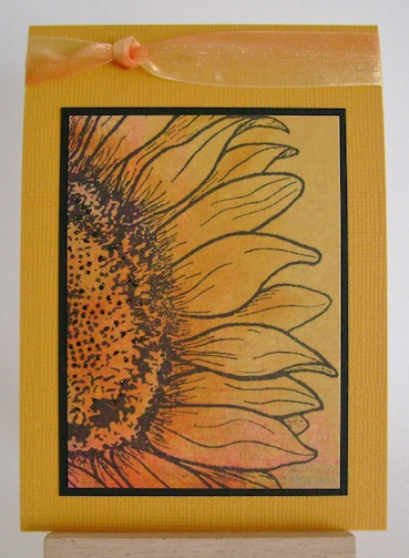 sunflower in colours of sunset with black frame on gold card stock