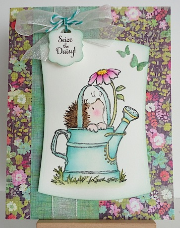 card with penny black hedgehog in a blue green watering can looking up at a pink daisy