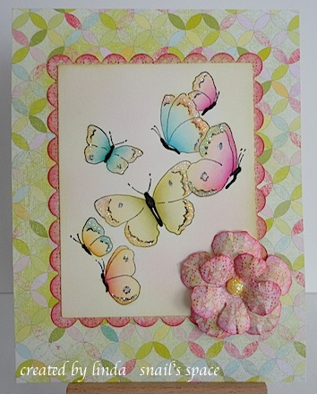 butterflies in spring colours with a pink rose at the bottom right