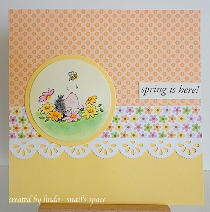 spring card with hedgehog peeking out of the ground and looking up at a tiny bee