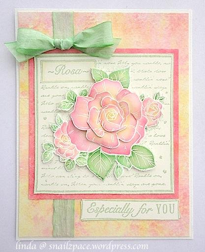 CB Rose Collage Linda
