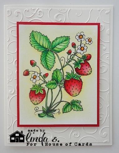 HOC.strawberries-1