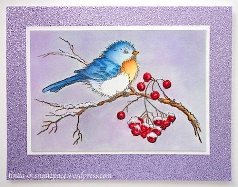 lindasnailzpace-wordpress-com-stampendous-bird