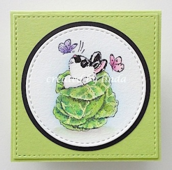 copyright linda@snailzpace.wordpress.com penny black bunny in cabbage-1