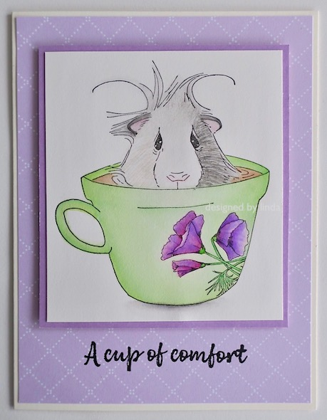 purple and green card with impression obsession guinea pig in teacup copyright Linda snailzpace.com