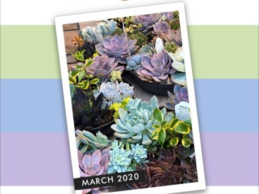 Altenew March 2020 Inspiration cool colour palette